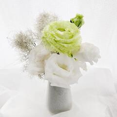 ブルーミングヴィル/花のある暮らし/フラワーベース/北欧/北欧雑貨/北欧インテリア/... たまにはピンク系以外のお花も♡ カーネー…