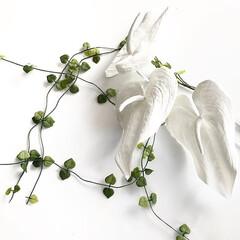 おうち時間/おうちで過ごそう/フェイクフラワー/オブジェ/お花/モノトーンインテリア/... 春だからお花を飾りたい・・・ けれどお花…(1枚目)