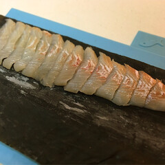 おうちごはん/うちの定番料理 釣ったお魚や山菜を昆布じめにしてます。 …(5枚目)