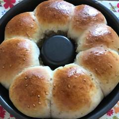 パン作り/簡単 もっちりちぎりパン焼きあがり