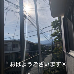 空/にこ/くろ/黒猫/猫/めん おはようございます☀ 良いお天気です。今…(1枚目)