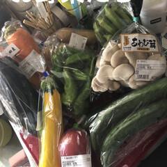 新鮮野菜/購入品/お昼ご飯/猫/めん 冷蔵庫すっからかんなので買い物へ行ってき…(2枚目)