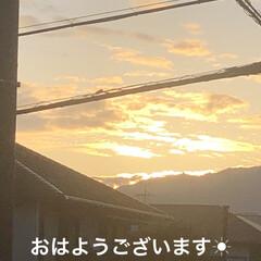 空/めん/猫/にこ/くろ/黒猫 おはようございます☀ きれいな朝焼けです…(1枚目)