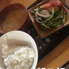 朝ご飯/空/黒猫/くろ/にこ/猫/... おはようございます☀ 良いお天気です。日…(6枚目)