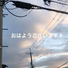 空/手作りジャム/にこ/めん/黒猫/猫/... おはようございます☀今日はちょっぴり贅沢…