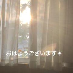 「おはようございます☀ いいお天気通り過ぎ…」(1枚目)