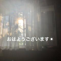 空/黒猫/くろ/にこ/猫/めん おはようございます☀ 暑いですね💦 少し…(1枚目)