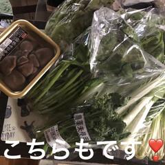 野菜/花のあるくらし/晩ご飯/おうちごはん/暮らし 一週間ぶりの買い出し。あー買った買った。…(3枚目)