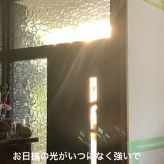 黒猫/くろ/癒し/猫飼のしあわせ/洗濯/掃除/... 梅雨が明けてホッとしたもののいきなりの暑…(2枚目)