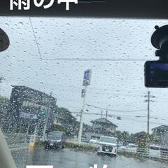 購入品/お昼ご飯/空/猫/めん/にこ/... 早朝は曇ってたけどやはり雨が降り出しまし…(1枚目)