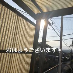 朝ご飯/空/晩ご飯/にこ/くろ/黒猫/... おはようございます☀ 連休明け平常が戻り…(1枚目)