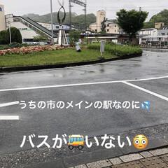 バス/雨/通院帰り ちょいと寄り道するはずが開店時間確認して…