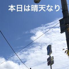 空/黒猫/にこ/くろ/猫/めん 今日はいいお天気。久しぶりに坂道下って駅…(1枚目)