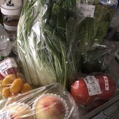 節約/3COINS/簡単/おしゃれ/スタミナご飯/スタミナ丼/... あー買った買った😆 美味しい野菜に果物。…(3枚目)