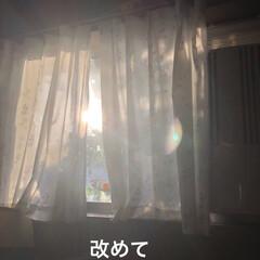 朝ご飯/めん/猫/にこ/くろ/黒猫 おはようございます☀ 良いお天気です。朝…(4枚目)