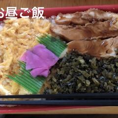 猫/ちび/梅酒/おやつ/昼ご飯 お昼ご飯とおやつを買って帰りました。 特…