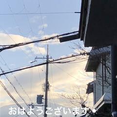 朝ご飯/空/ストーブ/くろ/にこ/黒猫/... おはようございます☀ 今朝は少し寒さまし…(1枚目)