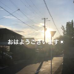 くろ/黒猫/癒し/猫飼いのしあわせ/モーニングセット/おうちごはん/... おはようございます😃 今日は良いお天気☀…