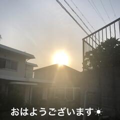 朝ご飯/空/黒猫/くろ/にこ/猫/... おはようございます☀ 良いお天気です。日…(1枚目)