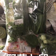お昼ご飯/購入品 買い出しへ行ってどっさり野菜を買いました…(2枚目)