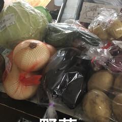 お昼ご飯/購入品 買い出しへ行ってどっさり野菜を買いました…(3枚目)