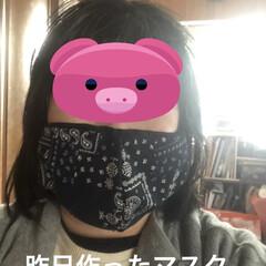 空/マスク/お花/くろ/にこ/黒猫/... おはようございます。今朝はまだ曇ってまし…(5枚目)