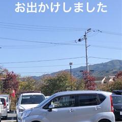 九度山/神社/世界遺産/紅葉/お出かけ 今日は少し足を伸ばしてお出かけをしました…