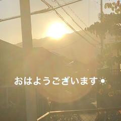 空/めん/猫/にこ/くろ/黒猫 おはようございます☀ 空は晴れてます😊 …(1枚目)