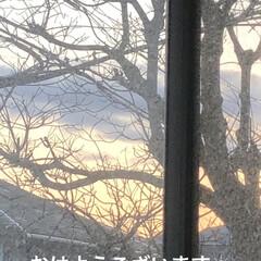 空/猫/猫飼いのしあわせ/くろ/にこ/黒猫/... おはようございます。 良いお天気です。し…(1枚目)