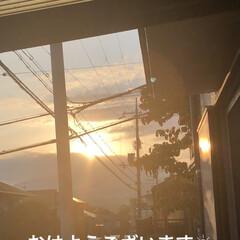 空/めん/猫/にこ/くろ/黒猫 おはようございます☀ 今日は良いお天気😊…(1枚目)