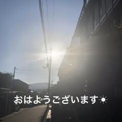 空/めん/猫/にこ/くろ/黒猫 おはようございます☀ いいお天気です。ゴ…(1枚目)