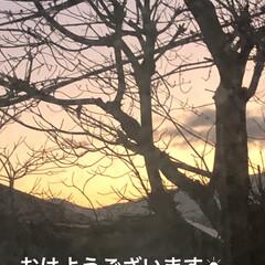 空/黒猫/にこ/くろ/猫/めん おはようございます。 朝の空はきれいでし…(1枚目)