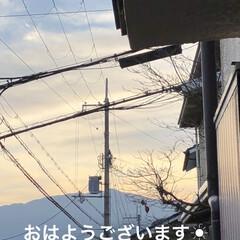 空/猫/めん/黒猫/くろ/にこ おはようございます☀ 今日もさむい朝です…(1枚目)