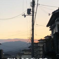 空/猫/めん/にこ/黒猫/くろ/... おはようございます。良いお天気になりまし…(1枚目)
