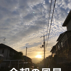 おうちごはん/簡単/空/猫/購入品 今朝の風景、素敵な空でした。昨日お魚屋さ…