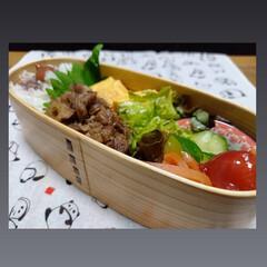 あさごはん/おひるごはん/ランチ/お弁当/lunchbox/daiso購入品/... おはよーございます 雨の朝になりました …(2枚目)