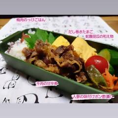 あさごはん/おひるごはん/ランチ/お弁当/lunchbox/daiso購入品/... おはよーございます 雨の朝になりました …(1枚目)