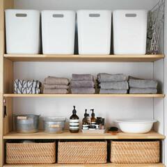 大木製作所 ステンレスハンガー DL 外干し 部屋干し(物干しハンガー、ピンチ)を使ったクチコミ「【洗面所】 洗面所、脱衣場の収納です。 …」(1枚目)
