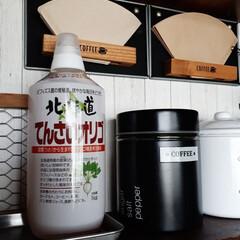 私のコーヒータイム/ビートオリゴ糖   砂糖の原料の北海道産ビートで作られた…