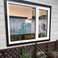 窓枠DIY/家の塗装 旦那と家の壁と屋根のペンキ塗りをしました…