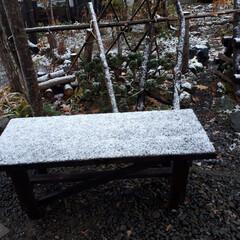 お菓子/鉢花/初雪 初雪降りました❄️☃️こんなに寒いのにお…