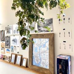 リビング/インテリア雑貨/スターウォーズ/ポスターのある部屋/ポスター/アートのある暮らし/... Stay Home. 壁をイメージチェン…