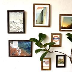 インテリア雑貨/古材/ポスターのある部屋/ポスターフレーム/ポスター/壁掛け/... ギャラリーのような壁掛けアート