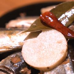 キッチン/キッチン家電/万能主菜/万能/フランス料理/フレンチ/... 「さんまと長芋のコンフィ」レシピ動画  …