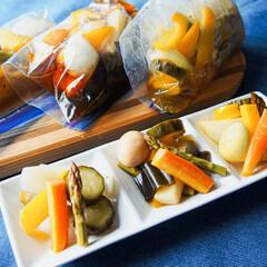 おうちごはん/簡単レシピ/野菜レシピ/野菜料理/低温調理/真空低温調理/... 低温調理で作る「低温調理ピクルス 3種🥒…(1枚目)