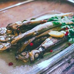 おうちごはん/魚料理/魚レシピ/ししゃもレシピ/低温調理/真空低温調理/... 低糖質の低温調理レシピ 🍽【ししゃものコ…