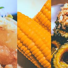 おうちごはん/夏レシピ/夏野菜/夏食材/旬/旬ごはん/... 「夏の旬野菜を使ったおいしい低温調理レシ…