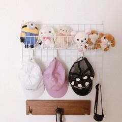 壁面収納/子供部屋収納/水切り棚クリップ/ダイソー/フック収納/帽子収納/... 小4娘の子供部屋に帽子をかけるフックを取…