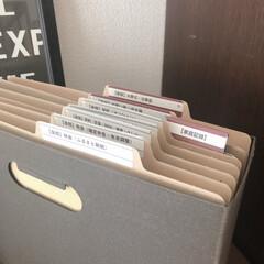 個別フォルダー/ファイルボックス/文房具管理/文房具/書類収納/ロハコ/... バーチカルファイリングはとにかくめんどく…