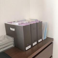 バーチカルファイリング/書類収納/家庭の書類/ファイリング/書類/書類整理/... 新婚の娘の家のホームファイリングです  …